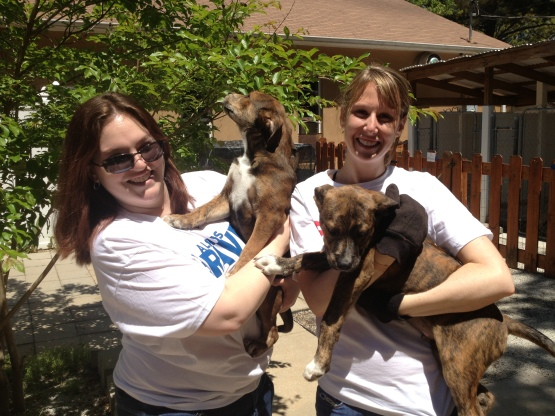 Christine Godby and Gloria Wickham cleaned windows then helped take puppies inside for lunch.